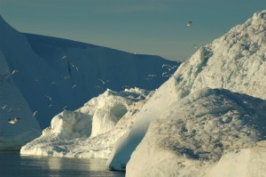 groenland 2007 5 232