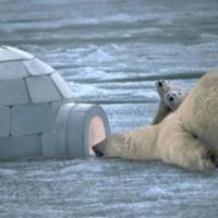 Soyez le premier à partir en expédition polaire avec vos élèves