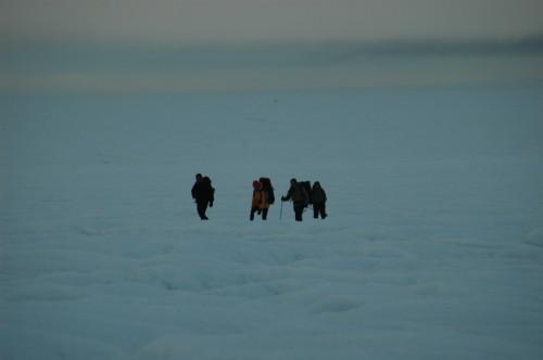 groenland 2007 3 286